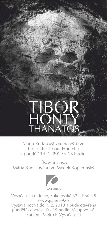 Tibor Honty THANATOS