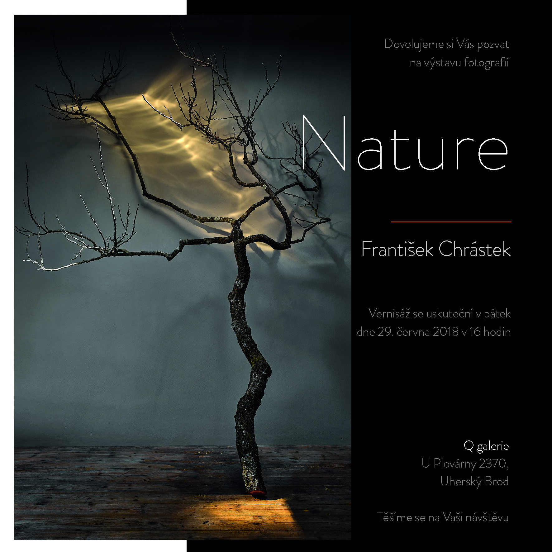 František Chrástek - Nature